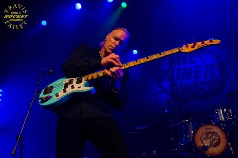 Billy on the bass   (photo Travis Failey / RSEN)