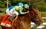 American Pharoah - Travers stakes first time by