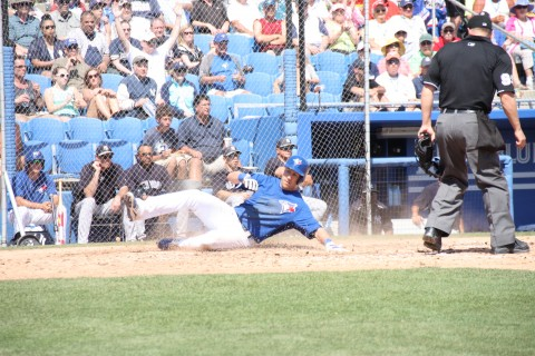 But here, Toronto left fielder Steve Tolleson scores the game winning run in the sixth on Caleb Gindl's single to right center for a 1-0 win over New York.  After walking with two down Tolleson stole second to get into scoring position for Gindl's base hit. (EDDIE MCIHELS PHOTO)
