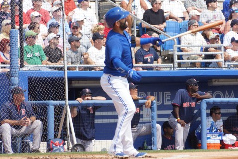 Jose Bautista (Joey Bats) gives the ball a long glance as it heads for the school yard.  as the Toronto Blue Jays beat the Boston Red Sox 6-3 Thursday. The solo shot was Baustia's third of the spring. watches along with everyone else as the rawhide sails out of Florida Auto Exchange Field. (EDDIE MICHELS PHOTO)