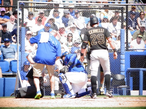 Toronto reliever Todd Redmond got two for one on one pitch in the top of the fourth inning on Sunday.  Redmond got Pittsburgh batter Francisco Cervelli but also plate umpire D.J. Reyburn.  Trainers from both teams rushed out to attend those hit with Reyburn appearing to get the worst.  After slight delay play continued with the visiting Buc's winning 1-0 over the Blue Jays. (EDDIE MICHELS PHOTO)