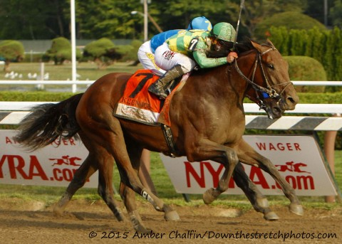2015 Travers Champion KEEN ICE (Amber Chalfin / Down the Stretch Photos)