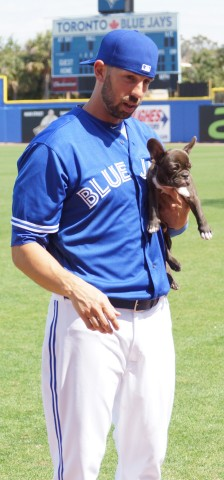 "Chris Colabello shows off his four month old French Bulldog named ""Clutch"" after Monday's inter squad game in which he had a homer, double and four RBI. (EDDIE MICHELS PHOTO)"