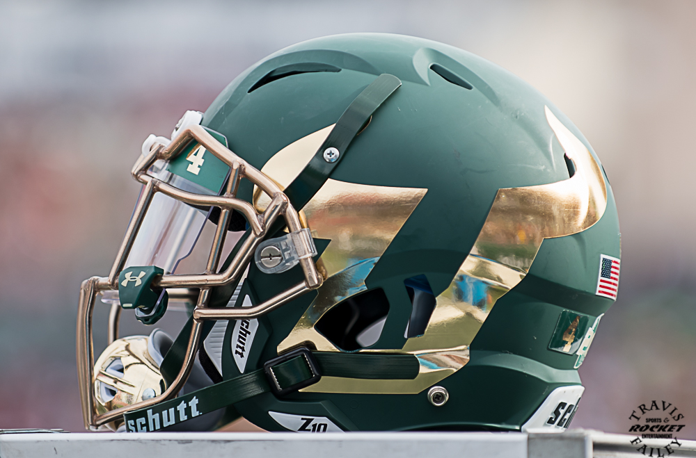 Image result for usf 2016 football helmet
